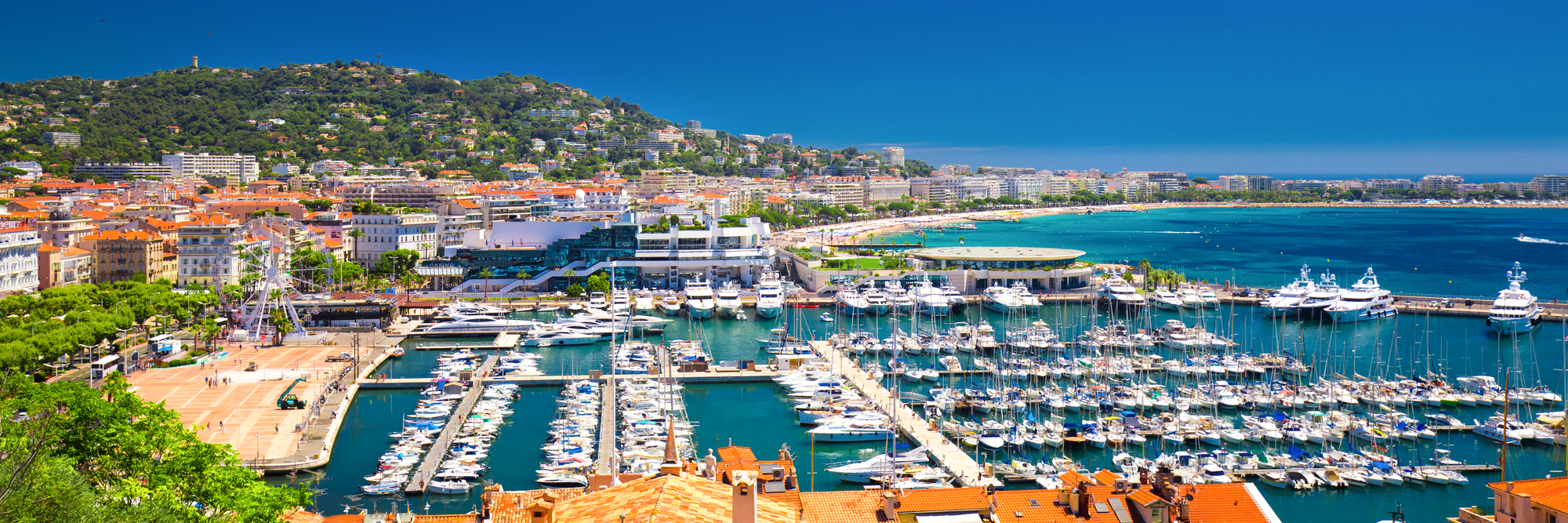 TFWA and Cannes 2021: <br> Your Questions Answered <br> Aude Bourdier, VP Marketing, Interviewed